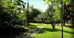 Vila Davidović Fruška gora