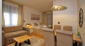 Studio apartman – All Seasons Residence