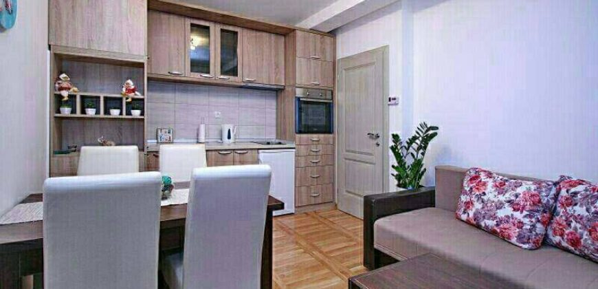Apartman Djina Zlatibor