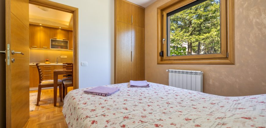 Apartman Milena Zlatibor