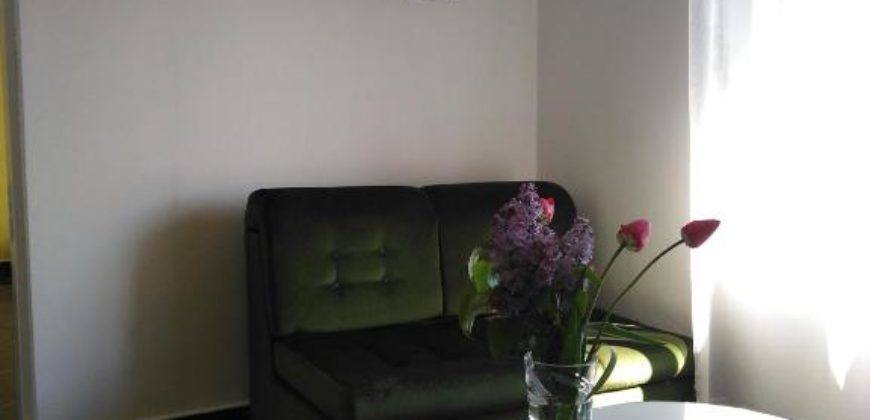 Apartman Silvana na Rudniku
