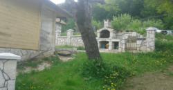 Domaćinstvo Ilije Milićevića