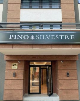 Vila Pino Silvestre
